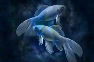 Oroscopo segno zodiacale dei Pesci